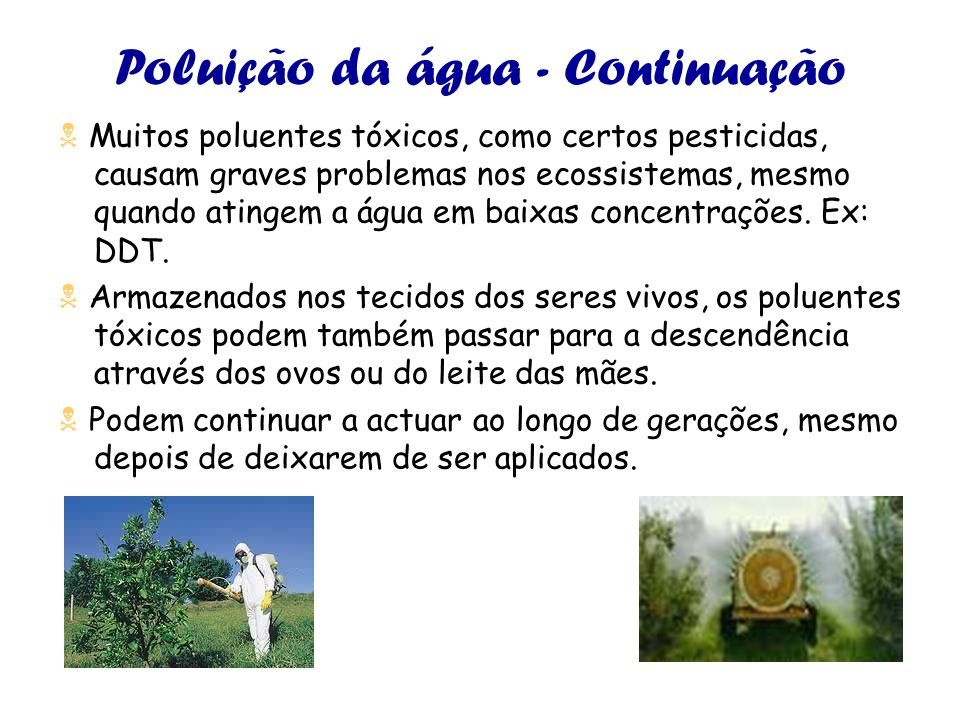 Poluição da água - Continuação Muitos poluentes tóxicos, como certos pesticidas, causam graves problemas nos ecossistemas, mesmo quando atingem a água em baixas concentrações.
