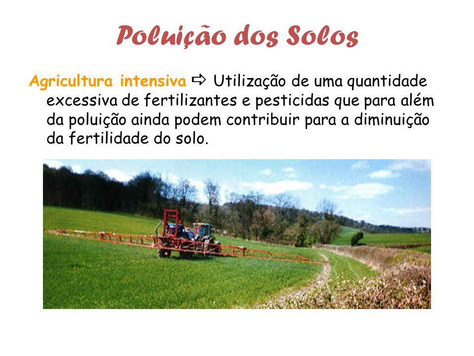 Poluição dos Solos Agricultura intensiva Utilização de uma quantidade excessiva de fertilizantes e pesticidas que para além da poluição ainda podem contribuir para a diminuição da fertilidade do solo.
