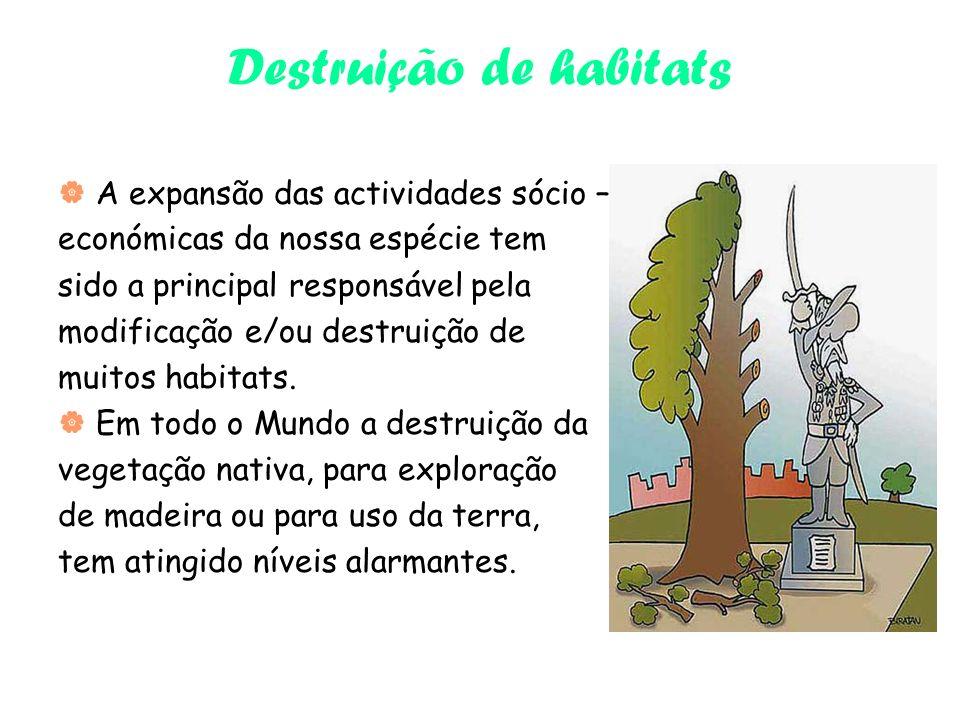 Destruição de habitats A expansão das actividades sócio – económicas da nossa espécie tem sido a principal responsável pela modificação e/ou destruição de muitos habitats.