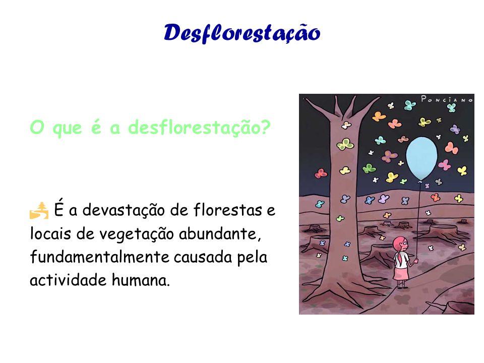 Desflorestação O que é a desflorestação.