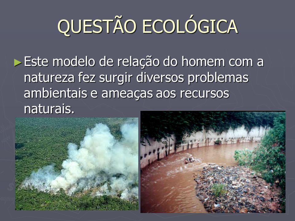QUESTÃO ECOLÓGICA Este modelo de relação do homem com a natureza fez surgir diversos problemas ambientais e ameaças aos recursos naturais. Este modelo