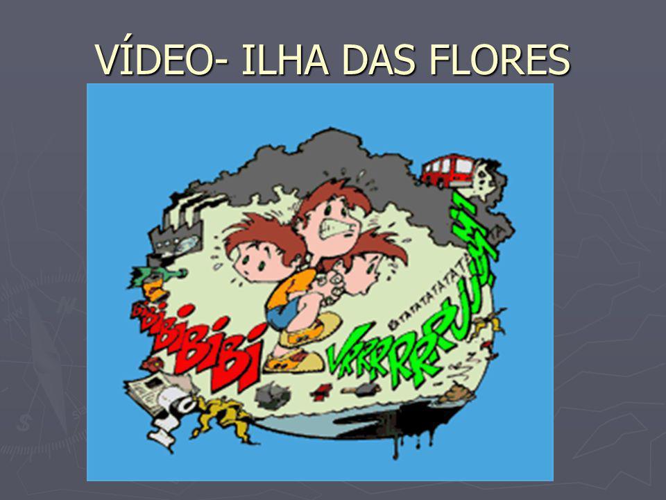 VÍDEO- ILHA DAS FLORES