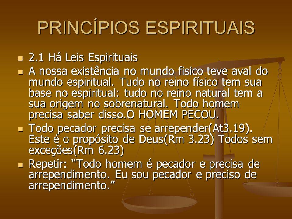 PRINCÍPIOS ESPIRITUAIS 2.1 Há Leis Espirituais 2.1 Há Leis Espirituais A nossa existência no mundo fisico teve aval do mundo espiritual. Tudo no reino