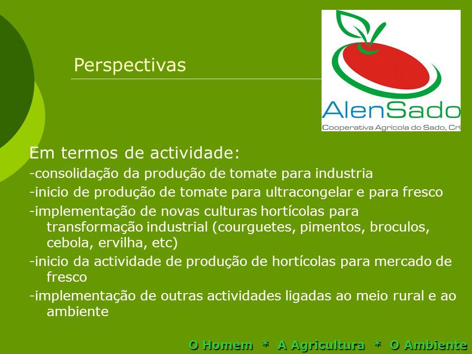 Em termos de actividade: -consolidação da produção de tomate para industria -inicio de produção de tomate para ultracongelar e para fresco -implementa