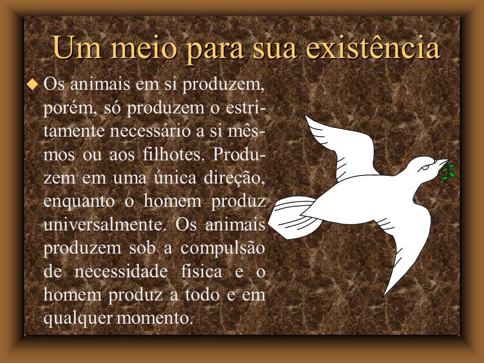 Um meio para sua existência Os animais em si produzem, porém, só produzem o estri- tamente necessário a si mês- mos ou aos filhotes. Produ- zem em uma
