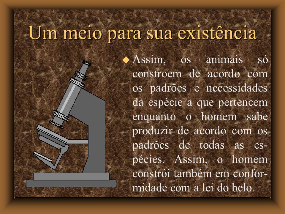 Um meio para sua existência Assim, os animais só constroem de acordo com os padrões e necessidades da espécie a que pertencem enquanto o homem sabe produzir de acordo com os padrões de todas as es- pécies.