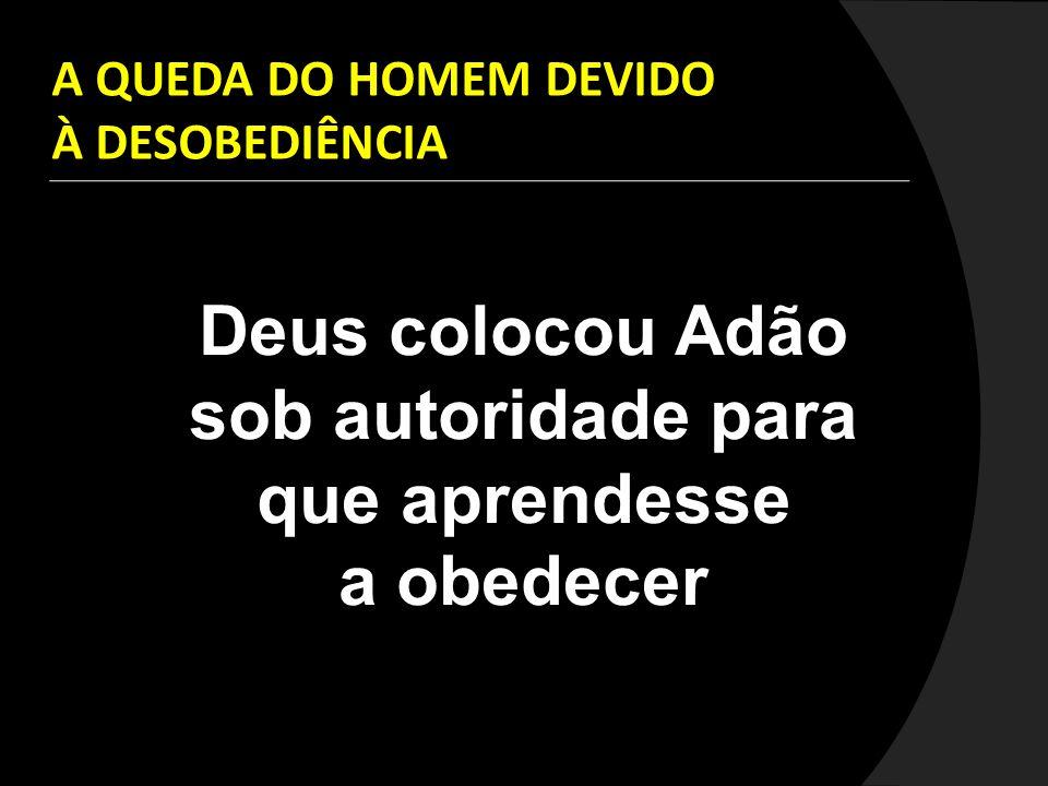 A QUEDA DO HOMEM DEVIDO À DESOBEDIÊNCIA Deus colocou Adão sob autoridade para que aprendesse a obedecer