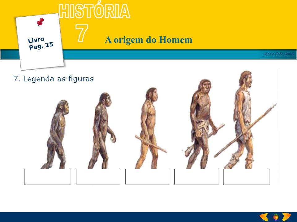 A origem do Homem Maria João Gama 7. Legenda as figuras Livro Pag. 25