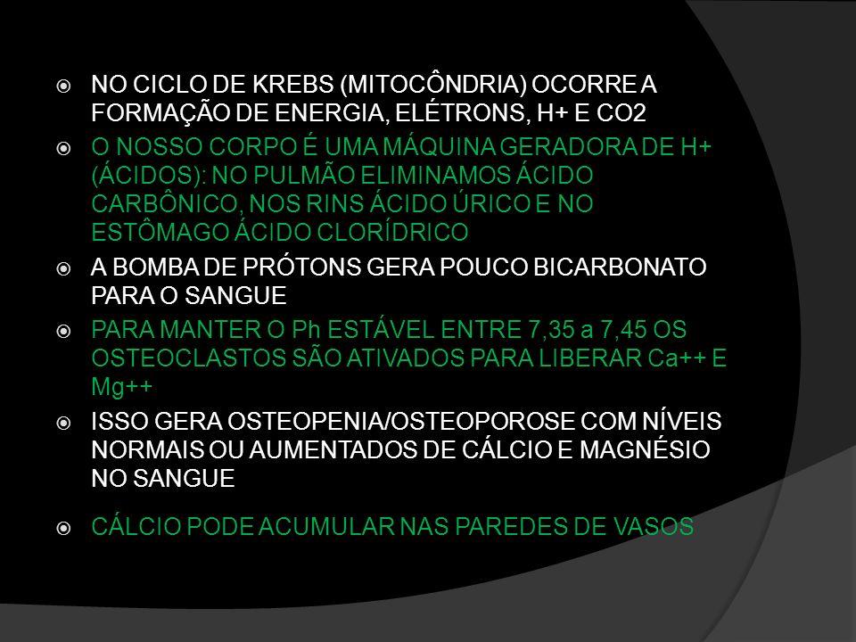 NO CICLO DE KREBS (MITOCÔNDRIA) OCORRE A FORMAÇÃO DE ENERGIA, ELÉTRONS, H+ E CO2 O NOSSO CORPO É UMA MÁQUINA GERADORA DE H+ (ÁCIDOS): NO PULMÃO ELIMIN