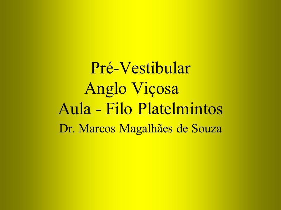 Pré-Vestibular Anglo Viçosa Aula - Filo Platelmintos Dr. Marcos Magalhães de Souza