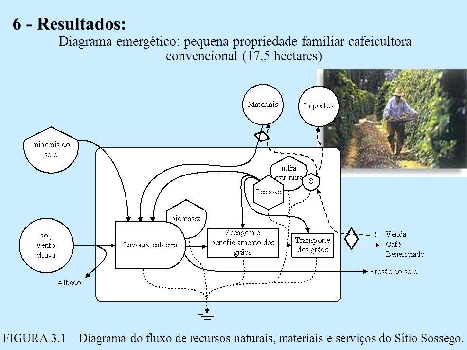 6 - Resultados: Diagrama emergético: pequena propriedade familiar cafeicultora convencional (17,5 hectares) FIGURA 3.1 – Diagrama do fluxo de recursos naturais, materiais e serviços do Sítio Sossego.