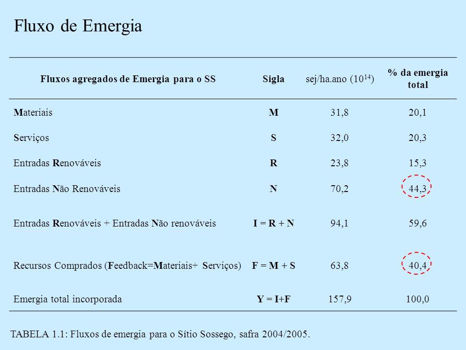 Fluxo de Emergia Fluxos agregados de Emergia para o SSSiglasej/ha.ano (10 14 ) % da emergia total MateriaisM31,820,1 ServiçosS32,020,3 Entradas RenováveisR23,815,3 Entradas Não RenováveisN70,244,3 Entradas Renováveis + Entradas Não renováveisI = R + N94,159,6 Recursos Comprados (Feedback=Materiais+ Serviços)F = M + S63,840,4 Emergia total incorporadaY = I+F157,9100,0 TABELA 1.1: Fluxos de emergia para o Sítio Sossego, safra 2004/2005.