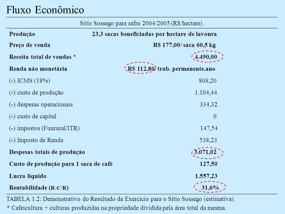 Fluxo Econômico TABELA 1.2: Demonstrativo do Resultado de Exercício para o Sítio Sossego (estimativa).