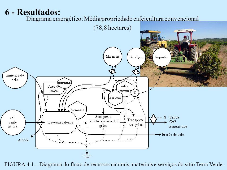 6 - Resultados: Diagrama emergético: Média propriedade cafeicultura convencional (78,8 hectares) FIGURA 4.1 – Diagrama do fluxo de recursos naturais, materiais e serviços do sítio Terra Verde.
