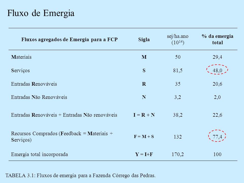 Fluxo de Emergia Fluxos agregados de Emergia para a FCPSigla sej/ha.ano (10 14 ) % da emergia total MateriaisM5029,4 ServiçosS81,548,0 Entradas RenováveisR3520,6 Entradas Não RenováveisN3,22,0 Entradas Renováveis + Entradas Não renováveisI = R + N38,222,6 Recursos Comprados (Feedback = Materiais + Serviços) F = M + S 13277,4 Emergia total incorporadaY = I+F170,2100 TABELA 3.1: Fluxos de emergia para a Fazenda Córrego das Pedras.