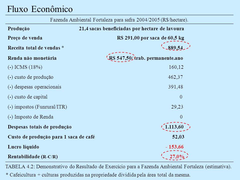 Fluxo Econômico Fazenda Ambiental Fortaleza para safra 2004/2005 (R$/hectare).