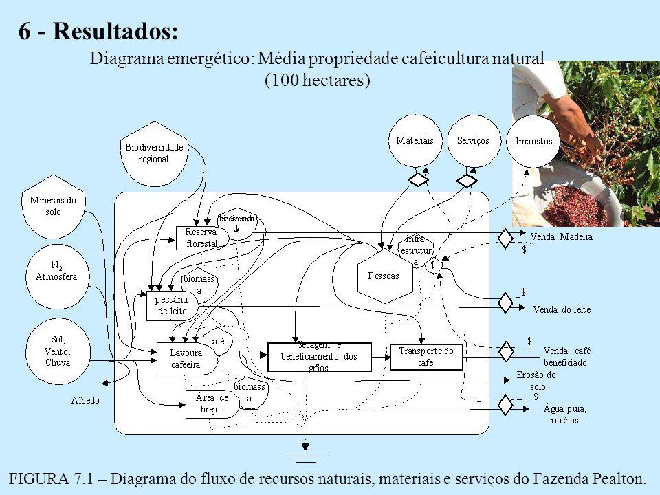 6 - Resultados: Diagrama emergético: Média propriedade cafeicultura natural (100 hectares) FIGURA 7.1 – Diagrama do fluxo de recursos naturais, materiais e serviços do Fazenda Pealton.