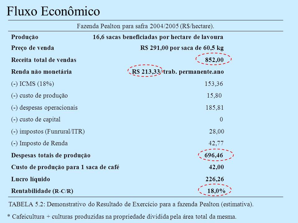 Fluxo Econômico Fazenda Pealton para safra 2004/2005 (R$/hectare).