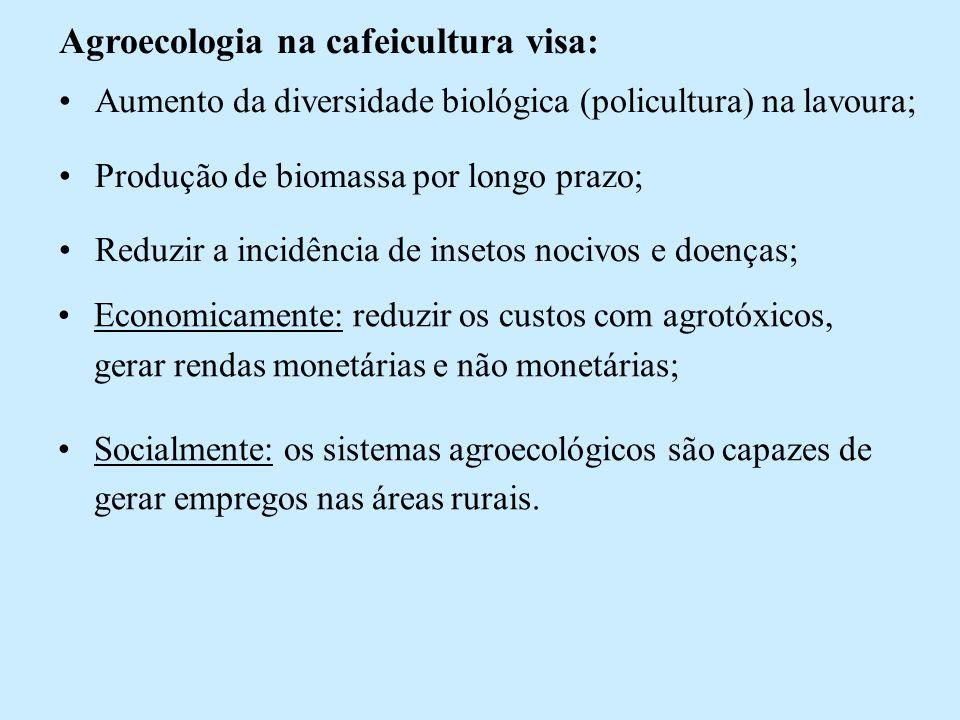 Fluxo Econômico Fazenda Córrego das Pedras para safra 2004/2005 (R$/hectare).