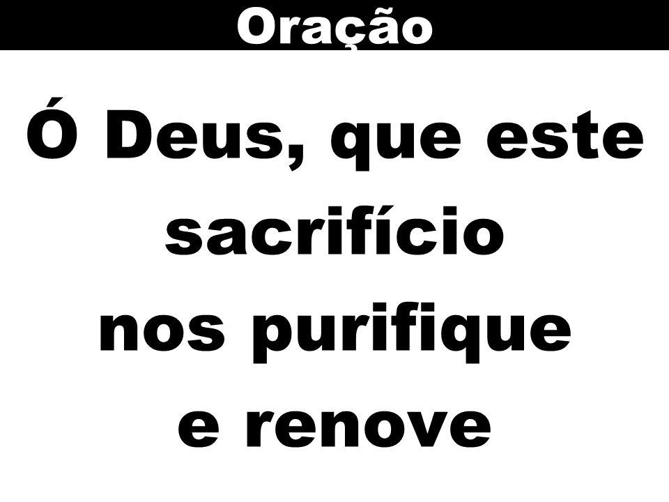 Ó Deus, que este sacrifício nos purifique e renove Oração