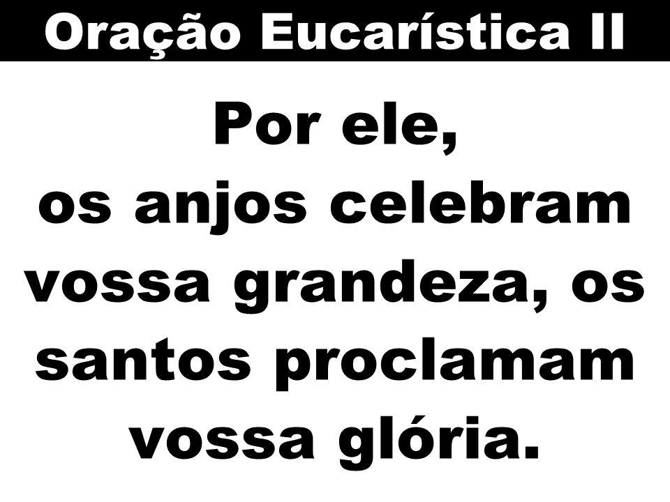 Por ele, os anjos celebram vossa grandeza, os santos proclamam vossa glória. Oração Eucarística II