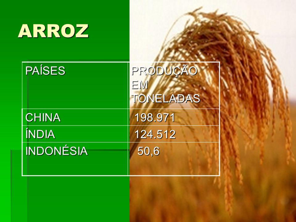 ARROZPAÍSES PRODUÇÃO EM TONELADAS CHINA 198.971 198.971 ÍNDIA 124.512 124.512 INDONÉSIA 50,6 50,6