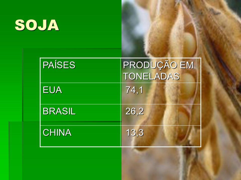 SOJAPAÍSES PRODUÇÃO EM TONELADAS EUA 74,1 74,1 BRASIL 26,2 26,2 CHINA 13,3 13,3