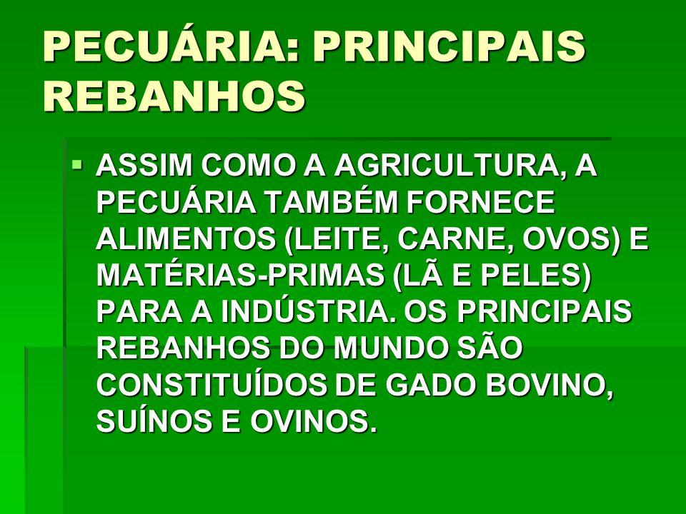 PECUÁRIA: PRINCIPAIS REBANHOS ASSIM COMO A AGRICULTURA, A PECUÁRIA TAMBÉM FORNECE ALIMENTOS (LEITE, CARNE, OVOS) E MATÉRIAS-PRIMAS (LÃ E PELES) PARA A INDÚSTRIA.