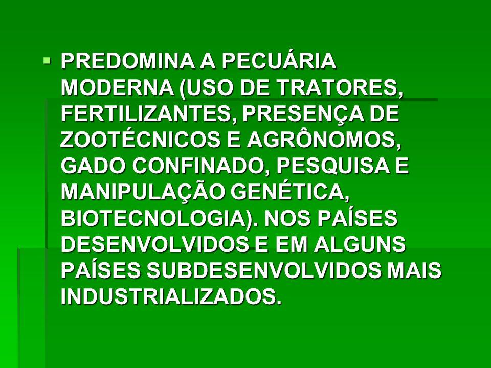 PREDOMINA A PECUÁRIA MODERNA (USO DE TRATORES, FERTILIZANTES, PRESENÇA DE ZOOTÉCNICOS E AGRÔNOMOS, GADO CONFINADO, PESQUISA E MANIPULAÇÃO GENÉTICA, BIOTECNOLOGIA).