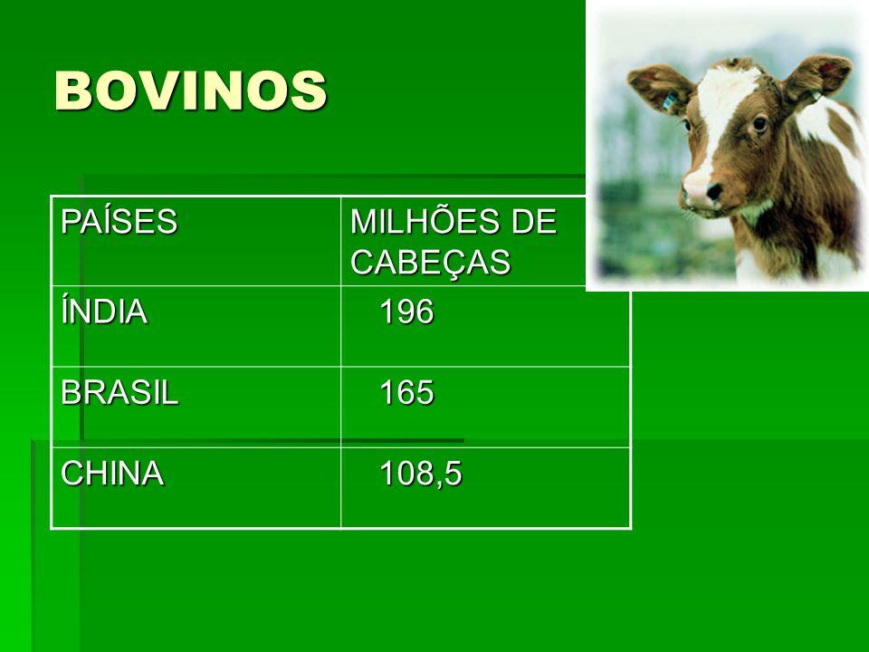 BOVINOS PAÍSES MILHÕES DE CABEÇAS ÍNDIA 196 196 BRASIL 165 165 CHINA 108,5 108,5