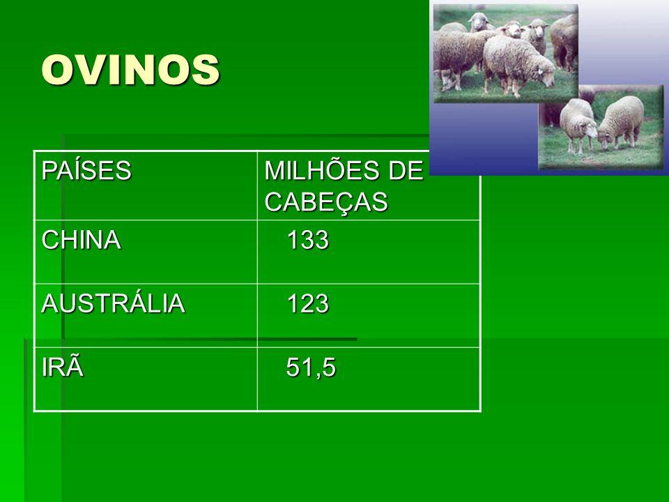 OVINOS PAÍSES MILHÕES DE CABEÇAS CHINA 133 133 AUSTRÁLIA 123 123 IRÃ 51,5 51,5