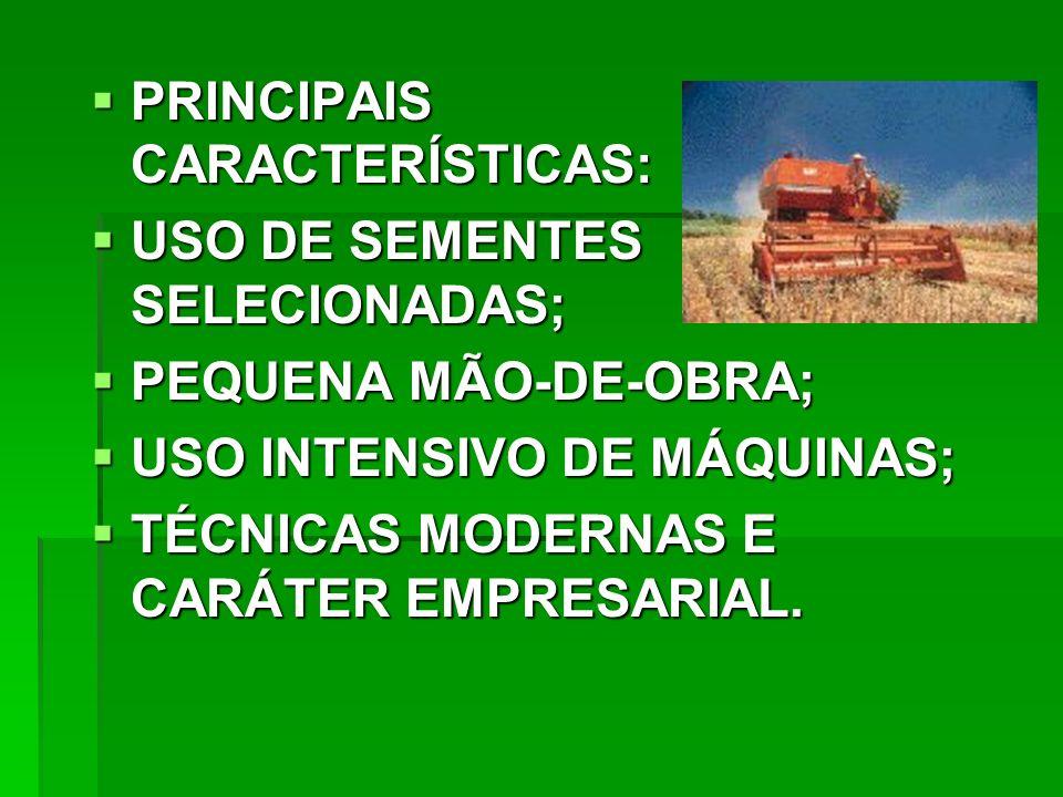 PRINCIPAIS CARACTERÍSTICAS: PRINCIPAIS CARACTERÍSTICAS: USO DE SEMENTES SELECIONADAS; USO DE SEMENTES SELECIONADAS; PEQUENA MÃO-DE-OBRA; PEQUENA MÃO-DE-OBRA; USO INTENSIVO DE MÁQUINAS; USO INTENSIVO DE MÁQUINAS; TÉCNICAS MODERNAS E CARÁTER EMPRESARIAL.