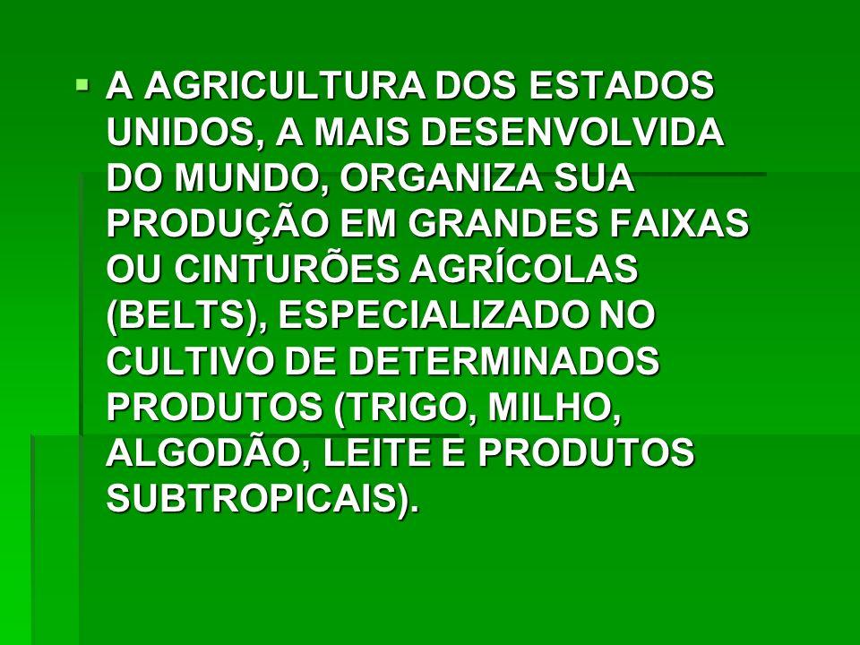 A AGRICULTURA DOS ESTADOS UNIDOS, A MAIS DESENVOLVIDA DO MUNDO, ORGANIZA SUA PRODUÇÃO EM GRANDES FAIXAS OU CINTURÕES AGRÍCOLAS (BELTS), ESPECIALIZADO NO CULTIVO DE DETERMINADOS PRODUTOS (TRIGO, MILHO, ALGODÃO, LEITE E PRODUTOS SUBTROPICAIS).