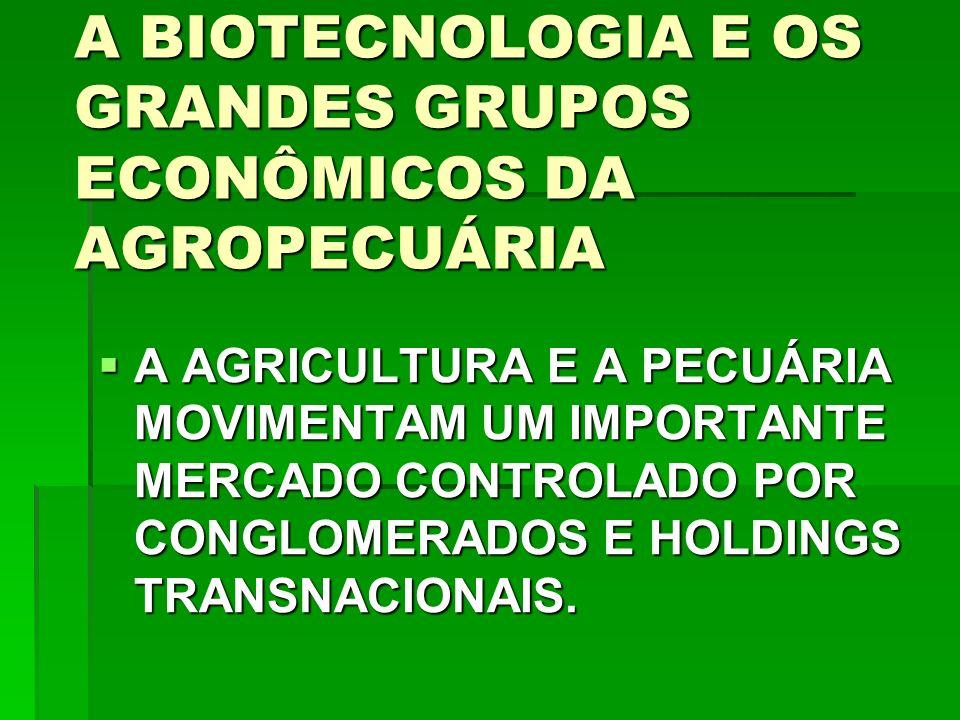 A BIOTECNOLOGIA E OS GRANDES GRUPOS ECONÔMICOS DA AGROPECUÁRIA A AGRICULTURA E A PECUÁRIA MOVIMENTAM UM IMPORTANTE MERCADO CONTROLADO POR CONGLOMERADOS E HOLDINGS TRANSNACIONAIS.