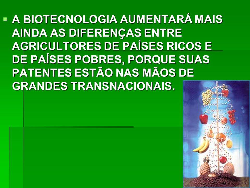 A BIOTECNOLOGIA AUMENTARÁ MAIS AINDA AS DIFERENÇAS ENTRE AGRICULTORES DE PAÍSES RICOS E DE PAÍSES POBRES, PORQUE SUAS PATENTES ESTÃO NAS MÃOS DE GRANDES TRANSNACIONAIS.