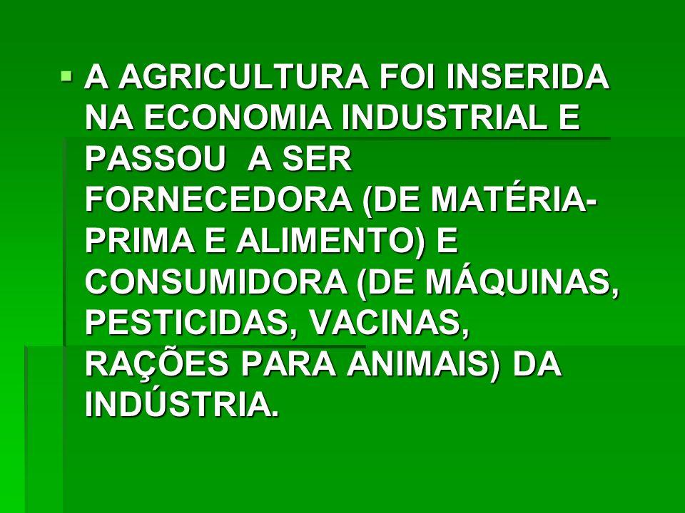 A AGRICULTURA FOI INSERIDA NA ECONOMIA INDUSTRIAL E PASSOU A SER FORNECEDORA (DE MATÉRIA- PRIMA E ALIMENTO) E CONSUMIDORA (DE MÁQUINAS, PESTICIDAS, VACINAS, RAÇÕES PARA ANIMAIS) DA INDÚSTRIA.