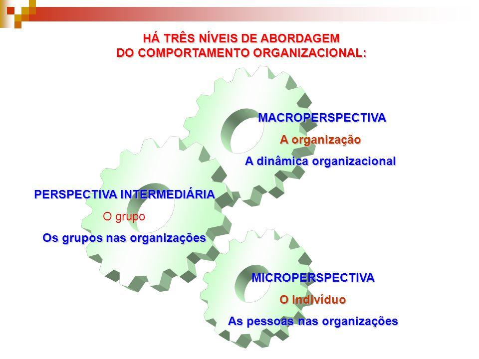 HÁ TRÊS NÍVEIS DE ABORDAGEM DO COMPORTAMENTO ORGANIZACIONAL: PERSPECTIVA INTERMEDIÁRIA O grupo Os grupos nas organizações MICROPERSPECTIVA O indivíduo