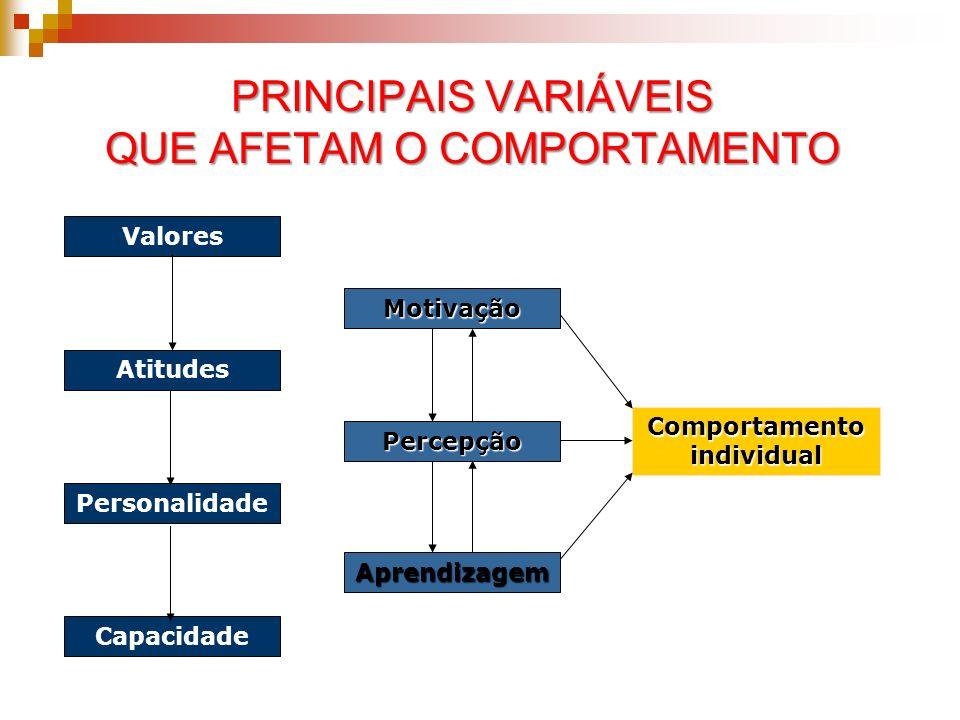 Valores Atitudes Personalidade Capacidade Comportamentoindividual Motivação Percepção Aprendizagem PRINCIPAIS VARIÁVEIS QUE AFETAM O COMPORTAMENTO