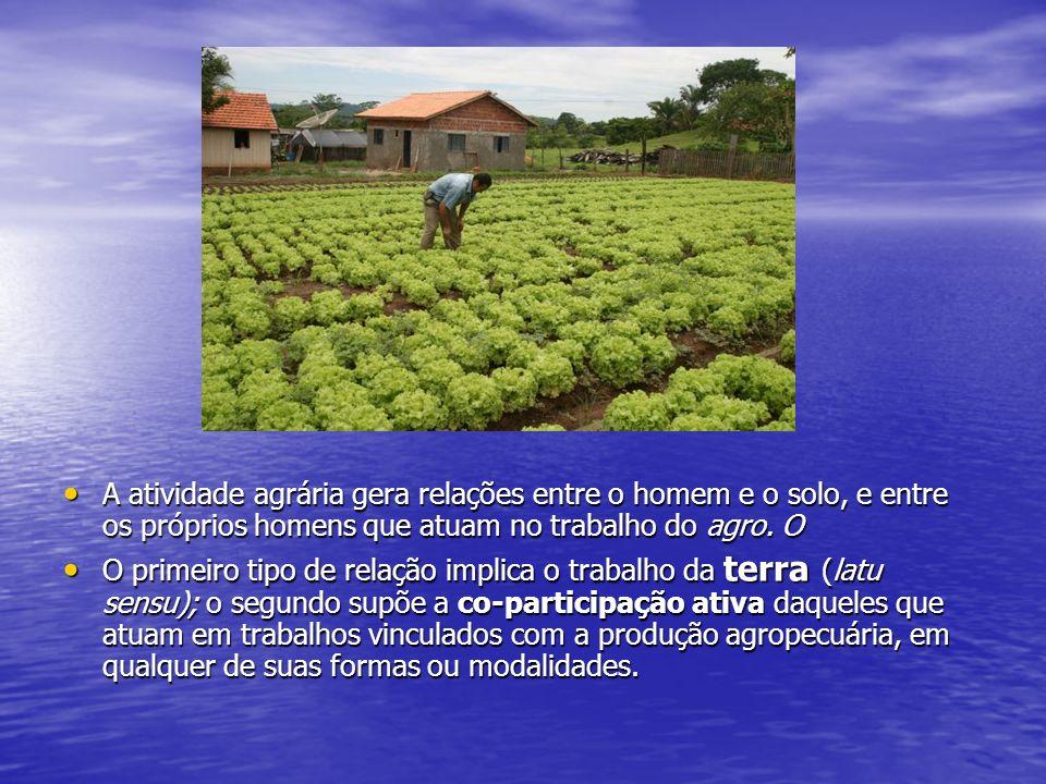 A atividade agrária gera relações entre o homem e o solo, e entre os próprios homens que atuam no trabalho do agro.