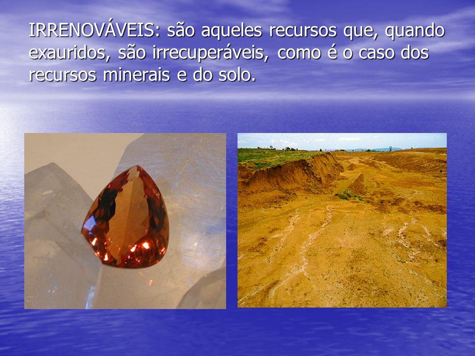 IRRENOVÁVEIS: são aqueles recursos que, quando exauridos, são irrecuperáveis, como é o caso dos recursos minerais e do solo.