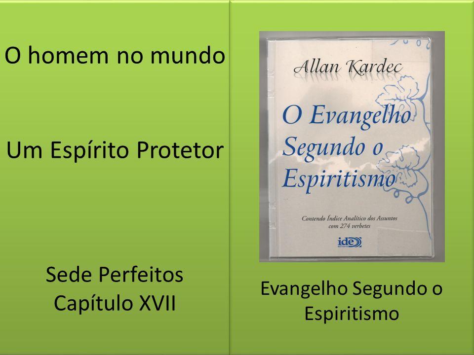 O homem no mundo Um Espírito Protetor Sede Perfeitos Capítulo XVII Evangelho Segundo o Espiritismo