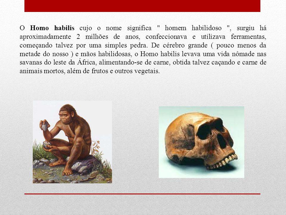 O Homo habilis cujo o nome significa