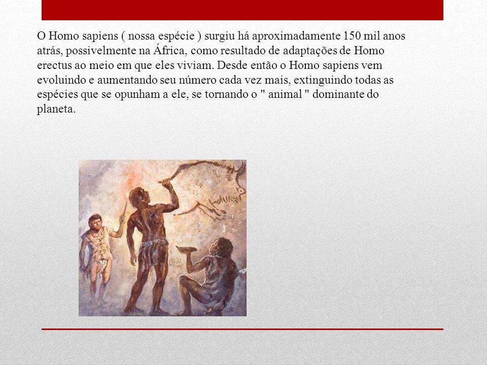 O Homo sapiens ( nossa espécie ) surgiu há aproximadamente 150 mil anos atrás, possivelmente na África, como resultado de adaptações de Homo erectus a