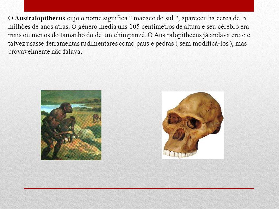 O Australopithecus cujo o nome significa