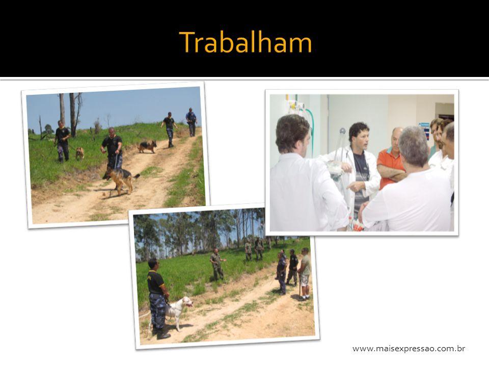 www.maisexpressao.com.br