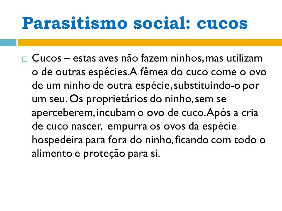 PARASITISMO SOCIAL