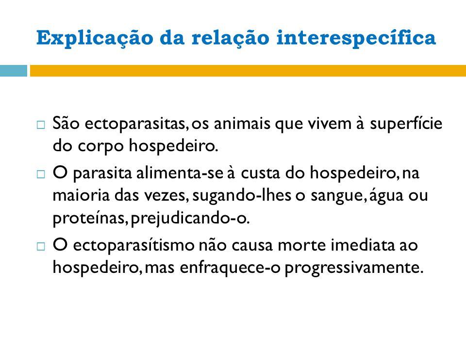 Explicação da relação interespecífica São ectoparasitas, os animais que vivem à superfície do corpo hospedeiro.