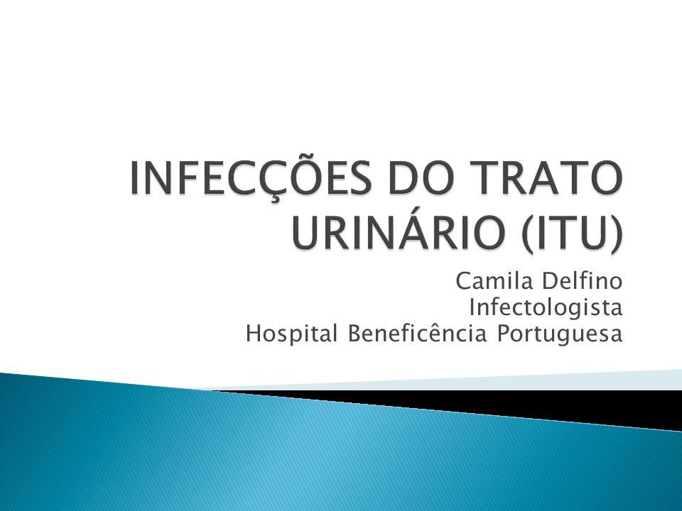 Dados mundiais: 130-175 milhões de infecções do trato urinário (ITU)/ano Custo de 1.6 bilhões de dólares Rara em homens EUA: 7 a 11 milhões (mulheres 01 episódio ITU/ano) 3,6 milhões de consultas/ano nos EUA entre mulheres de 18 a 75 anos Moura et al.