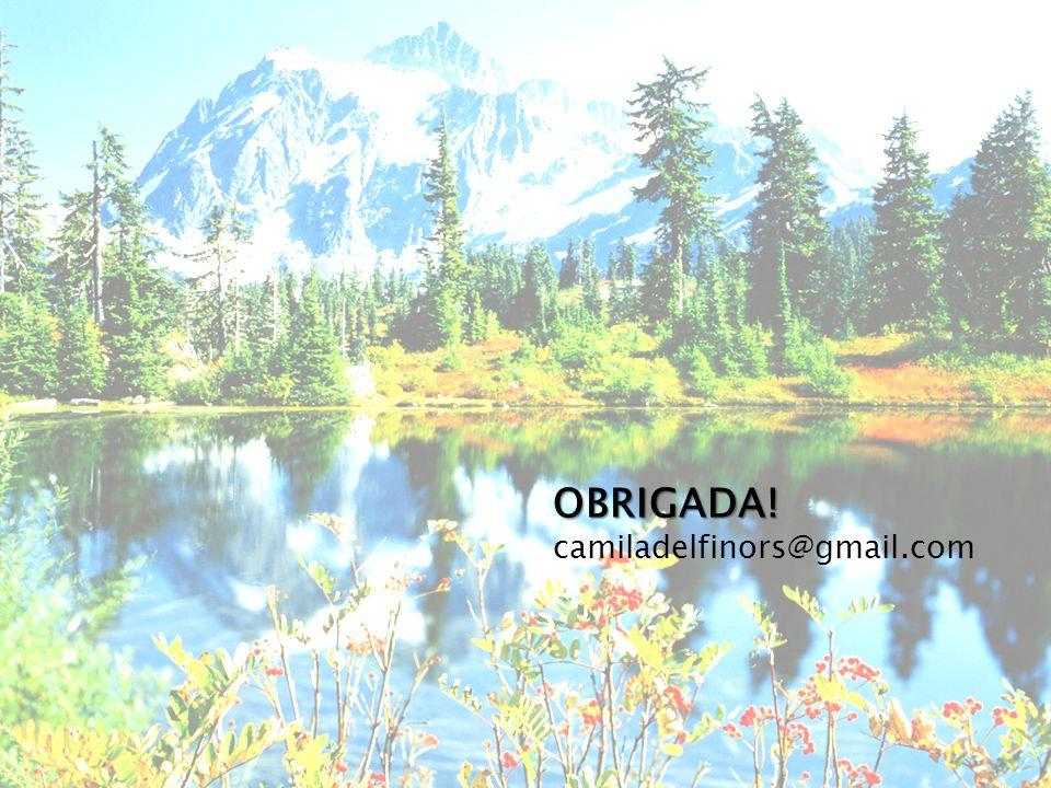 OBRIGADA! camiladelfinors@gmail.com OBRIGADA!