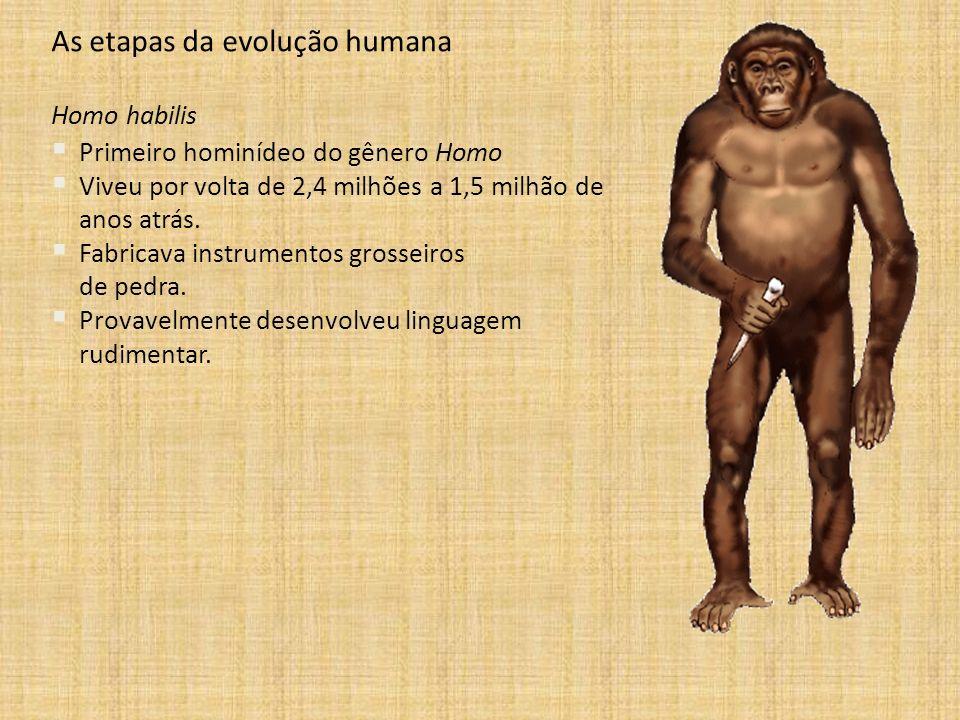 As etapas da evolução humana Homo habilis Primeiro hominídeo do gênero Homo Viveu por volta de 2,4 milhões a 1,5 milhão de anos atrás. Fabricava instr